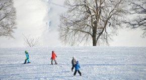 Fiches pratiques DGCCRF : ski, comment choisir son équipement ?