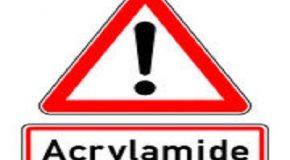 Acrylamide : la Commission européenne doit mieux protéger les consommateurs