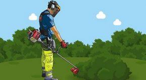 Pesticides : une utilisation massive et dangereuse à domicile