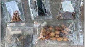 Arnaque aux graines de Chine : votre adresse utilisée pour l'envoi de fausses commandes