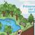 INFOLYS : la gestion des eaux pluviales, un enjeu multiple